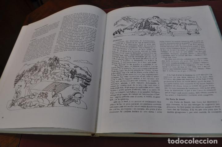 Libros: geografia de catalunya - josep mª panareda i pilarin bayés - col·lecció llavor any 1977 - IEB - Foto 3 - 179379646