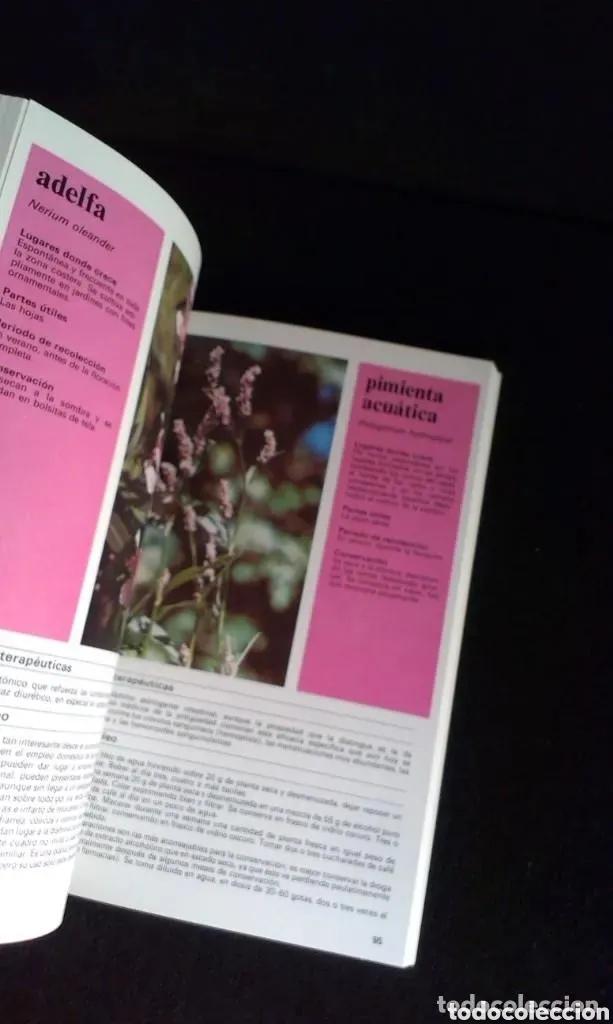 Libros: ALDO POLETTI : PLANTAS Y FLORES MEDICINALES - DOS TOMOS (PARRAMON, 1982 - Foto 3 - 182644797