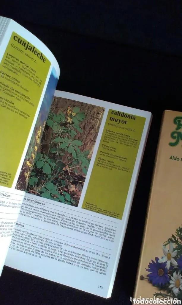 Libros: ALDO POLETTI : PLANTAS Y FLORES MEDICINALES - DOS TOMOS (PARRAMON, 1982 - Foto 5 - 182644797