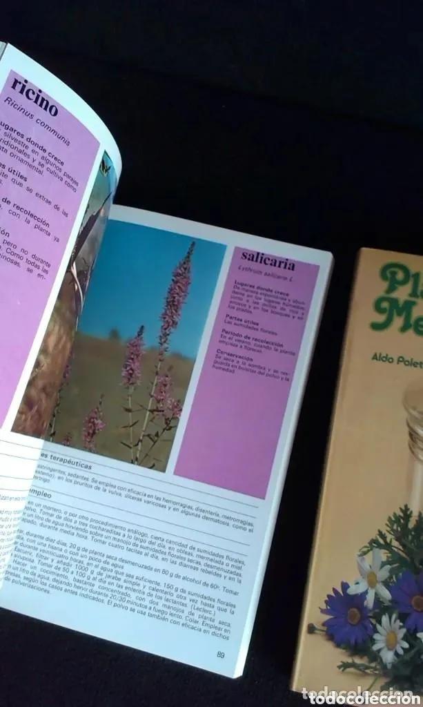 Libros: ALDO POLETTI : PLANTAS Y FLORES MEDICINALES - DOS TOMOS (PARRAMON, 1982 - Foto 6 - 182644797