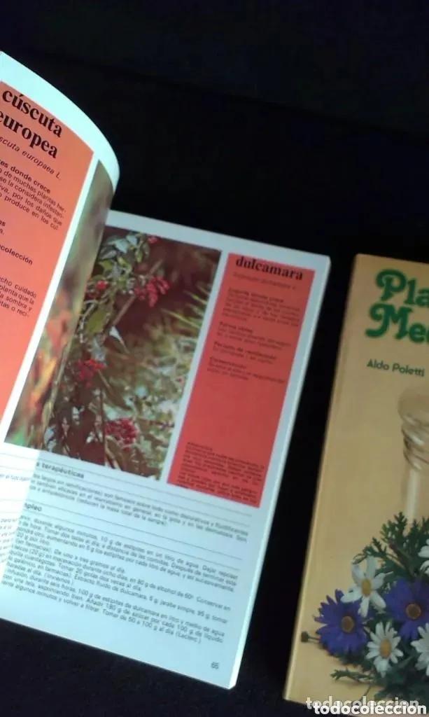 Libros: ALDO POLETTI : PLANTAS Y FLORES MEDICINALES - DOS TOMOS (PARRAMON, 1982 - Foto 7 - 182644797