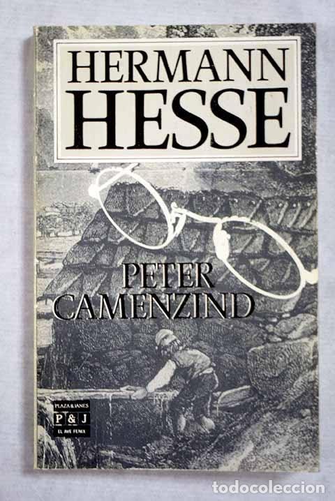 PETER CAMENZIND (Libros sin clasificar)