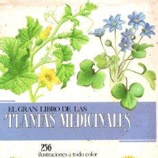 Libros: EL GRAN LIBRO DE LAS PLANTAS MEDICINALES - NO CONSTA AUTOR. Lote 194753655