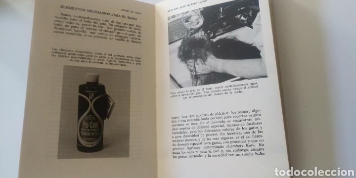 Libros: CUIDE SU GATO - Foto 7 - 195344907