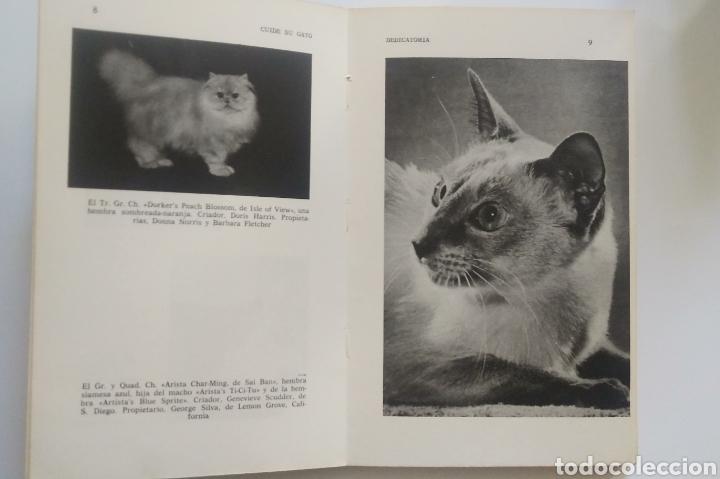 Libros: CUIDE SU GATO - Foto 12 - 195344907