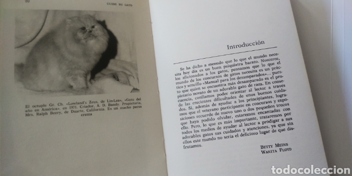 Libros: CUIDE SU GATO - Foto 13 - 195344907