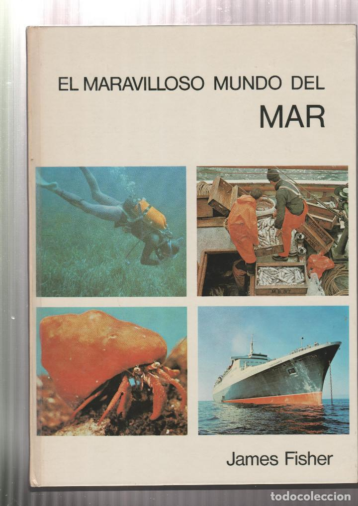 EL MARAVILLOSO MUNDO DEL MAR- ARNOLD L. HASKELL-EDICION 1972 (Libros sin clasificar)
