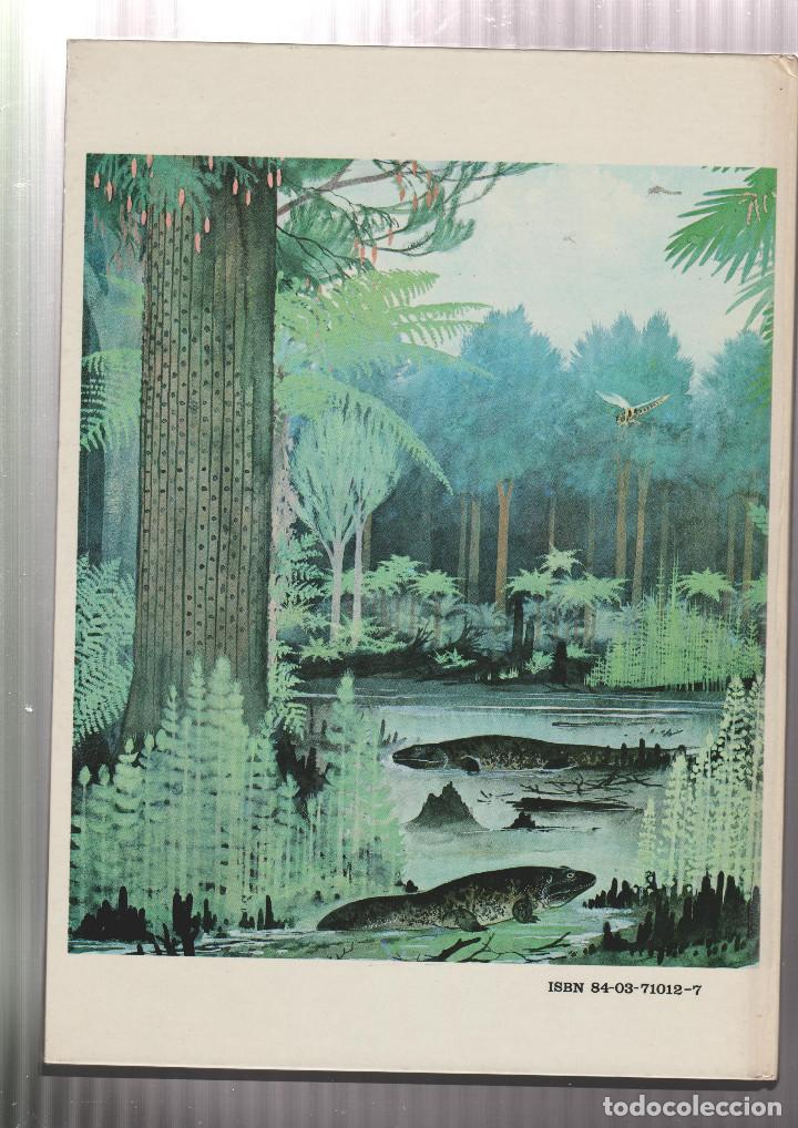 Libros: EL MARAVILLOSO MUNDO DE LOS ANIMALES PREHISTORICOS- ARNOLD L. HASKELL-EDICION 1972 - Foto 2 - 195386776