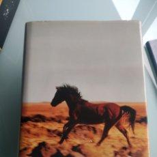 Libros: LA VERDADERA HISTORIA DE LA BANDA DE KELLY - PETER CAREY (TAPA DURA) (NUEVO). Lote 199821561