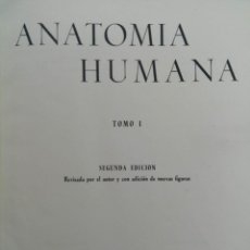 Libros: ANATOMIA HUMANA TOMO I - FRANCISCO ORTS LLORCA - EDITORIAL CIENTÍFICO-MÉDICA 1959. Lote 218691535