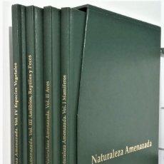 Libros: NATURALEZA AMENAZADA. VOL. I: MAMÍFEROS, VOL. II: AVES; VOL. III: ANFIBIOS, REPTILES Y PECES; VOL. I. Lote 222021075