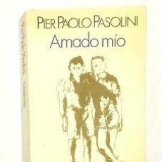 Libros: PASOLINI, PIER PAOLO - AMADO MÍO.. Lote 221904670