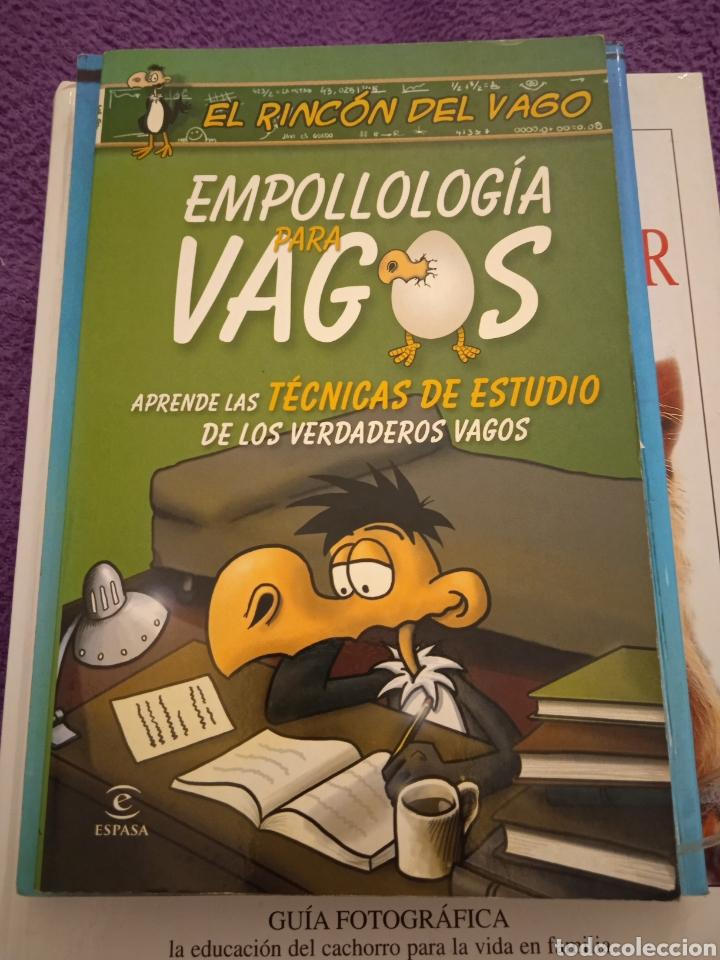 EMPOLLOLOGÍA PARA VAGOS APRENDE LAS TÉCNICAS DE ESTUDIO DE LOS VERDADEROS VAGOS (Libros sin clasificar)