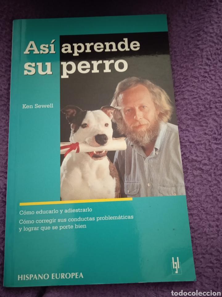 ASÍ APRENDE TU PERRO DE KEN SEWELL (Libros sin clasificar)