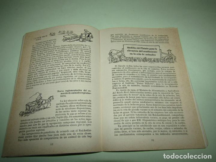 Libros: ELEVACION DEL RENDIMIENTO EN LA CRIA DE GANADO. UN PROBLEMA EUROPEO. Folleto de 1940 - Foto 5 - 234929905