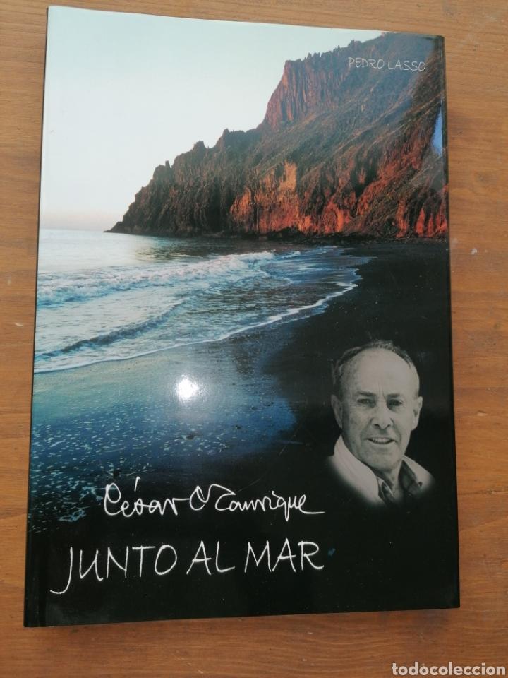 CÉSAR MANRIQUE - JUNTO AL MAR - PEDRO LASSO - DEDICATORIA (Libros sin clasificar)