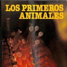 Libros: LOS PRIMEROS ANIMALES. Lote 236551420