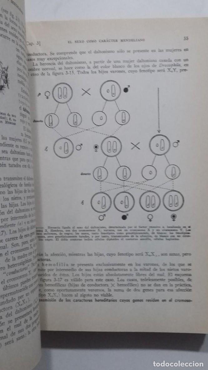 Libros: BIOLOGÍA GENERAL I Y II (2 VOLÚMENES) SALUSTIO ALVARADO. TDK422 - - Foto 3 - 183865333