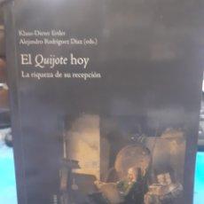 Libros: EL QUIJOTE HOY. LA RIQUEZA DE SU RECEPCIÓN : - ERTLER, K-D. RODRIGUEZ DIAZ, ALEJANDRO (EDS).. Lote 190958858