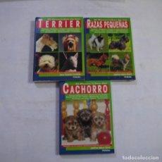 Libros: LOTE 3 LIBROS SOBRE PERROS - EDICIONES TIKAL. Lote 254606425