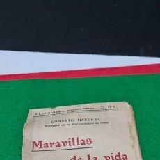Libros: MARAVILLAS DE LA VIDA. ERNESTO HAECKEL. CENTRO EDITORIAL PRESA. LOS PEQUEÑOS GRANDES LIBROS.. Lote 259760250