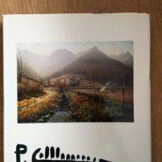 Libros: PERE COLLDECARRERA. Lote 260541775