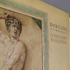 Libros: DIBUJOS DE LOS SIGLOS XIV AL XX. COLECCIÓN WOODNER (CATÁLOGO EXPOSICIÓN MUSEO DEL PRADO). Lote 262950645
