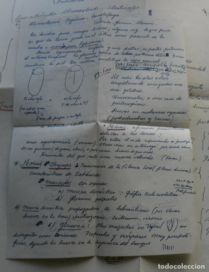 Libros: 185,, BIOLOGIA DE LOS PARASITOS DEL HOMBRE. LUIS IGLESIA IGLESIAS. CON 181 GRABADOS, 2º. EDICION. - Foto 5 - 269378613