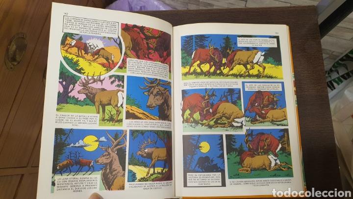 Libros: Libro Walt Disney ,peliculas tomo II - Foto 12 - 269816648