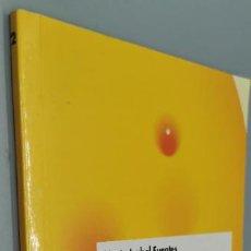 Libros: HUGO, MELENUDO - MARIA ISABEL FUENTES. Lote 271598163