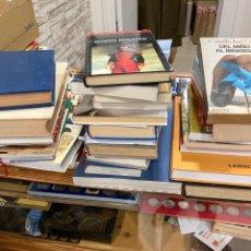 Libros: LOTE DE LIBROS, TODOS LOS QUE SE VEN. Lote 281027698