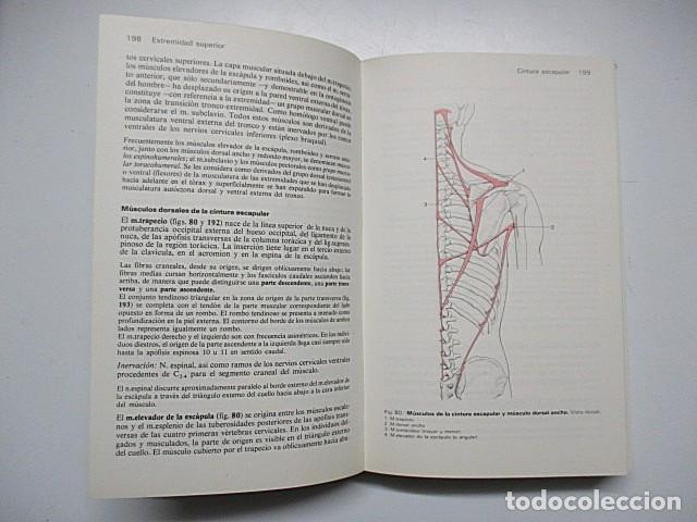 Libros: FRICK, H./ LEONHARDT, H./ STARCK, D. - MANUAL DE ANATOMÍA HUMANA (2 vols.) - Foto 3 - 288153588