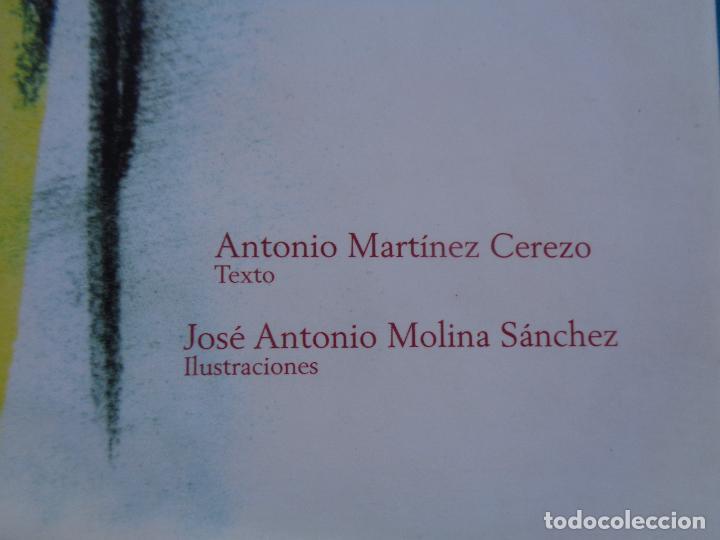 Libros: MURCIA FRUTAL, ANTONIO MARTINEZ CEREZO Y JOSÉ MOLINA SÁNCHEZ. MURCIA 2003. - Foto 3 - 288400603
