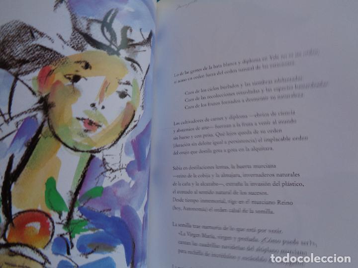 Libros: MURCIA FRUTAL, ANTONIO MARTINEZ CEREZO Y JOSÉ MOLINA SÁNCHEZ. MURCIA 2003. - Foto 8 - 288400603