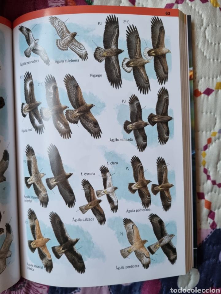 Libros: Aves de Europa - Foto 2 - 288431118