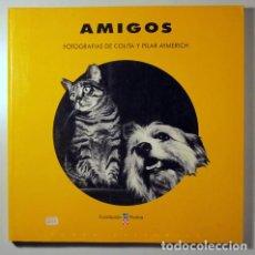 Libros: COLITA - AYMMERICH, PILAR - AMIGOS - BARCELONA 1991 - MUY ILUSTRADO. Lote 294383128