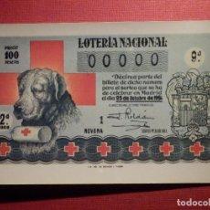 Loterie Nationale: LOTERIA NACIONAL - POSTAL SERIE M - Nº 6 - DÉCIMOS SORTEOS DE LA CRUZ ROJA - AÑO 1981. Lote 75712967