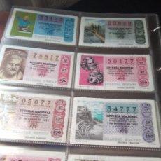 Lotería Nacional: LOTERIA NACIONAL AÑO 1981 COMPLETO, 40 DECIMOS. Lote 132741026
