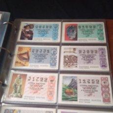 Lotería Nacional: LOTERIA NACIONAL AÑO 1986 COMPLETO, 50 DECIMOS. Lote 132741482