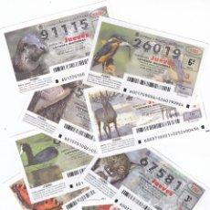 Lotería Nacional: LOTERIA AÑO COMPLETO 2007 DE LOS JUEVES. Lote 137172822
