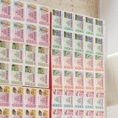 Lotería Nacional: 31 TIRAS COMPLETAS DE LA LOTERIA NACIONAL AÑO 1975,1981,1982,1983 Y 1984. Lote 170967740