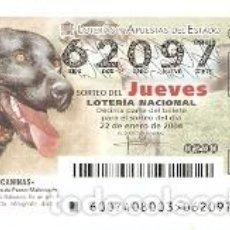 Lotería Nacional: LOTERÍA JUEVES, SORTEO 7 DE 2004. PERRO DE PASTOR MALLORQUÍN. REF. 10-0407. Lote 184594497