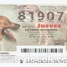 Lotería Nacional: LOTERÍA DEL JUEVES, SORTEO 11 DE 2004. PERRO DE PASTOR VASCO. REF. 10-0409. Lote 184594572