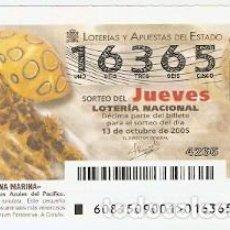 Lotería Nacional: LOTERÍA JUEVES, SORTEO 81-2005. PULPO DE ANILLOS AZULES DEL PACÍFICO. REF. 10-0581. Lote 185831433