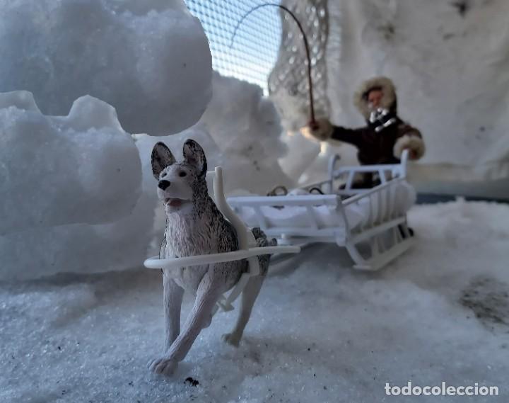 Madelman: Madelman MDE Explorador polar con trineo, perro, latigo, prismáticos, pico, saco, fardo, cuerda, etc - Foto 6 - 234942040