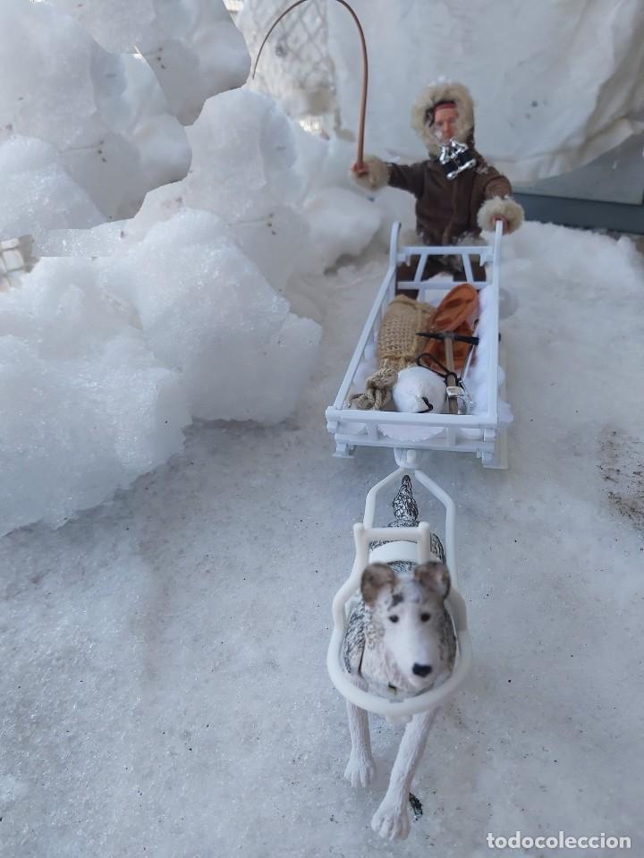 Madelman: Madelman MDE Explorador polar con trineo, perro, latigo, prismáticos, pico, saco, fardo, cuerda, etc - Foto 8 - 234942040