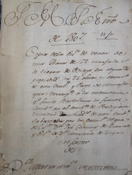 GRANADA, 1.807. BONITA ESCRITURA DE VENTA DE TIERRA DE OLIVAR EN EL PAGO DE ALMAJAYAR (Coleccionismo - Documentos - Manuscritos)