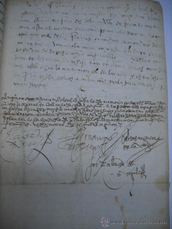 MANUSCRITO S. XVI 1568. LICENCIA PARA PONER MONTE DE BERMILLO DE ENCINAS, ROBLES Y OTROS ARBOLES. (Coleccionismo - Documentos - Manuscritos)