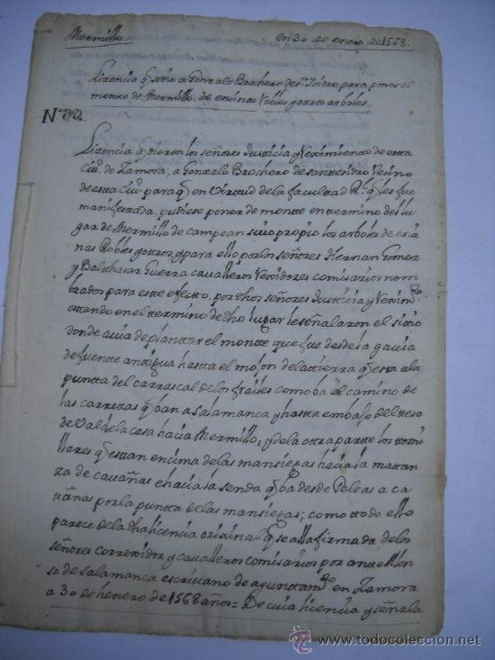 Manuscritos antiguos: MANUSCRITO S. XVI 1568. LICENCIA PARA PONER MONTE DE BERMILLO DE ENCINAS, ROBLES Y OTROS ARBOLES. - Foto 5 - 28973057
