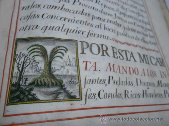 Manuscritos antiguos: REAL EXECUTORIA DE NOBLEZA SOLARIEGA DEL APELLIDO CALVO, Manuscrito pergamino 1502-1751 firma real - Foto 7 - 30387314